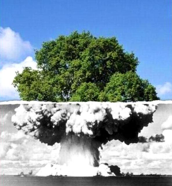 Родина, моя — термоядерная
