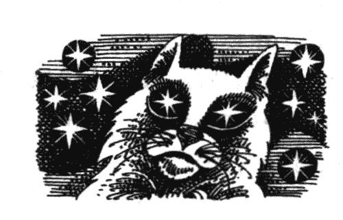 """Иллюстрация к книге Эрин Хантер """"Коты воители"""" (Голоса в ночи) http://www.e-reading.club/bookreader.php/1035115/Hanter_-_Golosa_v_nochi.html"""